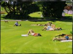 Sunbathers on the Grass